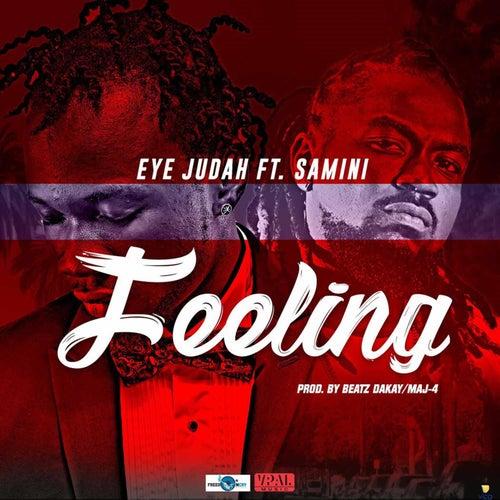 Feeling by Eye Judah