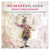 Weimarer Klassik, Vol. 1 by Weimar Thuringian Chamber Orchestra