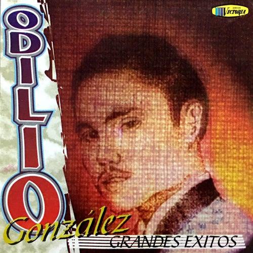 Grandes Éxitos by Odilio González