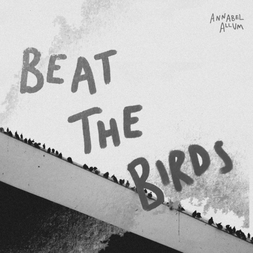Beat the Birds by Annabel Allum