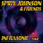 Spidy Johnson & Friends: Infrasonic 2 (29 Dubstep, Ragga, Dancehall, Jungle, House & Techn by Various Artists