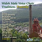 Welsh Male Voice Choir Tradition by Various Artists