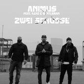 Zwei Schüsse by Animus