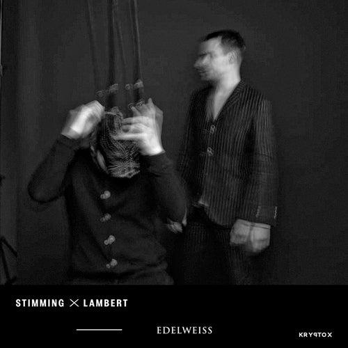 Edelweiss von Stimming x Lambert