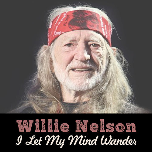 I Let My Mind Wander by Willie Nelson