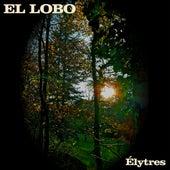 Élytres by El Lobo