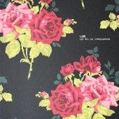 Doi Ani De Capodopere - EP by Various Artists