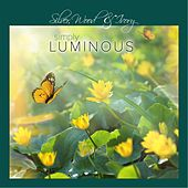 Simply Luminous by Silver, Wood & Ivory