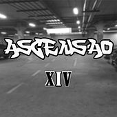 Ascensão by Xiv