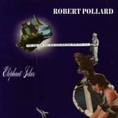 Elephant Jokes de Robert Pollard