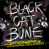 What a Way to Make a Living de Black Cat Bone