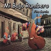 Mi Bajo Rumbero by Fito Garcia