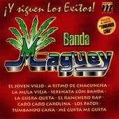 Y Siguen Los Exitos de Banda Maguey