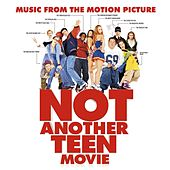 Music From The Motion Picture Not Another Teen Movie by Various Artists