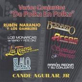 De Polka en Polka by Various Artists