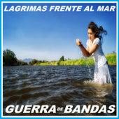 Lagrimas Frente Al Mar by Guerra De Bandas