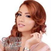 Covers van Gabby Tamez
