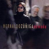 Nómada de Hernaldo Zúñiga