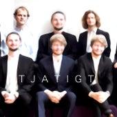 Tjatigt by Fredbergs Orkester