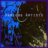 New Year - New Trip by Various Artists