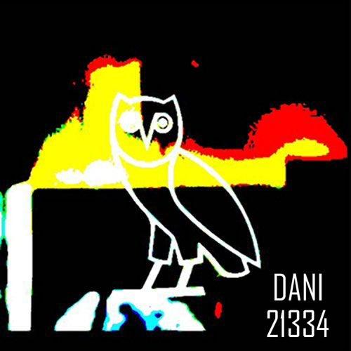 21334 by Dani