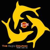 The Onyx Dolphin (feat. Lex Lu) de B.Slade