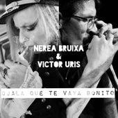 Ojalá Que Te Vaya Bonito by Nerea Bruixa