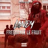 Freestyle le fruit de Landy