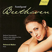 Beethoven Transfigured by Petronel Malan