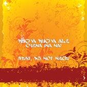 China (Na Na) [feat. DJ Not Nice] by Rucka Rucka Ali