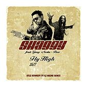 Fly High 2k17 (feat. GARY PINE & RJ MAINE) by Shaggy