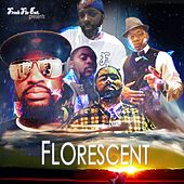 Florescent by Various Artists