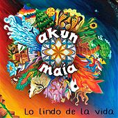 Lo Lindo de la Vida by Akun Maia