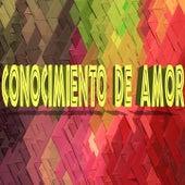 Conocimiento de Amor de Various Artists