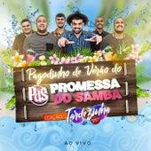 Pagodinho de Verão do Promessa do Samba (Ao Vivo) by Promessa do Samba
