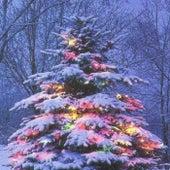 Christmas 2005 by Bill Protzmann