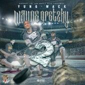 Wayne Gretzky 2 by Yungwack
