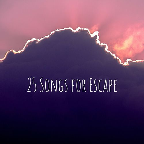 25 Songs for Escape de Meditation Music Zone