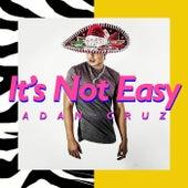 It's Not Easy de Adan Cruz