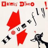 House Fly von Tricky Disco