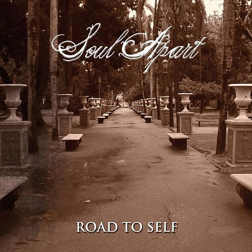 Road to self by Soul Apart