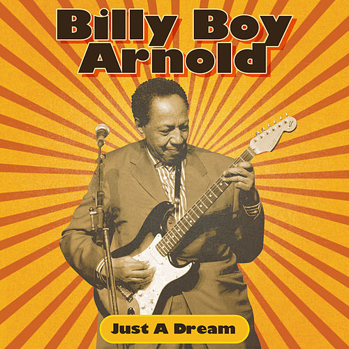 Just A Dream by Billy Boy Arnold