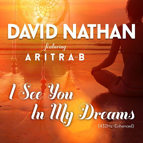 I See You in My Dreams (432hz Version) [feat. Aritra B] de David Nathan