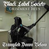 Trampled Down Below di Black Label Society