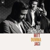 Mitt dumma jag - Svensk jazz by Bo Sundström