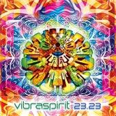 Vibraspirit 23.23 - EP by Various Artists