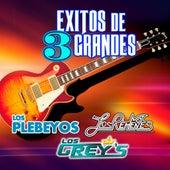 Exitos De 3 Grandes by Various Artists