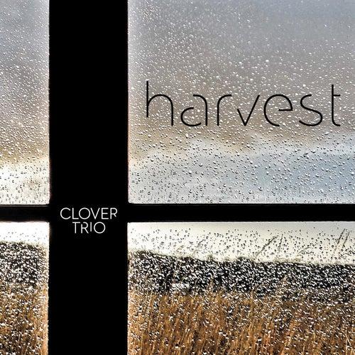 Harvest by Clover Trio