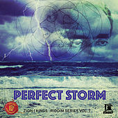 Perfect Storm by Various Artists