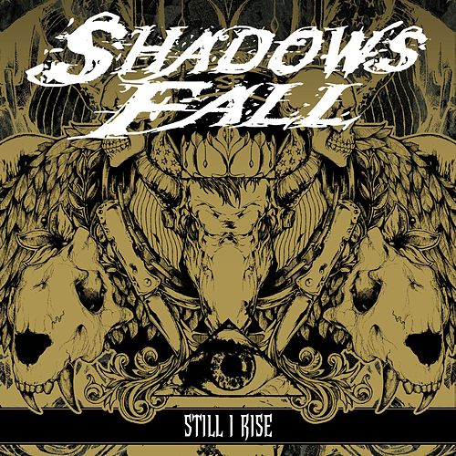 Still I Rise by Shadows Fall